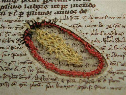 Manoscritto medievale riparato con un ricamo in filo di seta colorato, chiamato punto  festone. Veniva utilizzata la seta colorata, perché la seta nera si deteriorava velocemente. Il prezioso manoscritto é conservato presso la biblioteca universitaria di Uppsala.