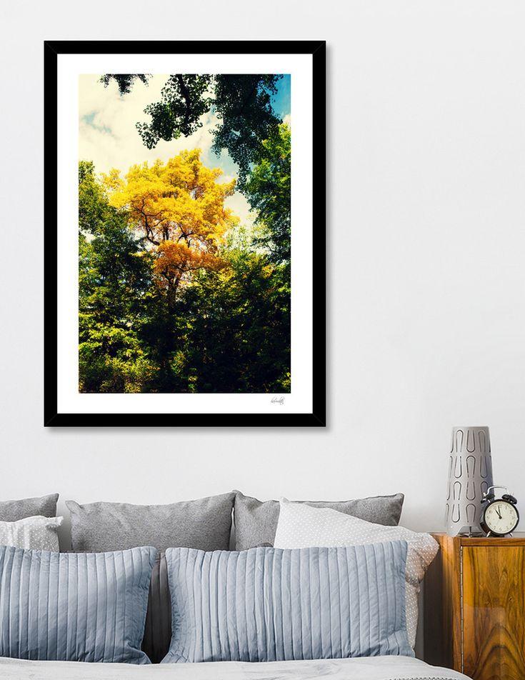 «Yellow tree», Numbered Edition Art Print by haroulita - From 18€ - Curioos  #curioos #wallart #walldecor #trees #nature #newyork #nyc #centralpark #homedecor #homedecorideas #homedecoration #fall #falldecor #autumn #autumncolors