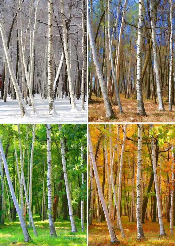 Winter Spring Summer Fall - Set of Four 5x7 Painted Pixels Art Photograph Metallic Canvas PRINTS - Made by artstudio54 on ETSY