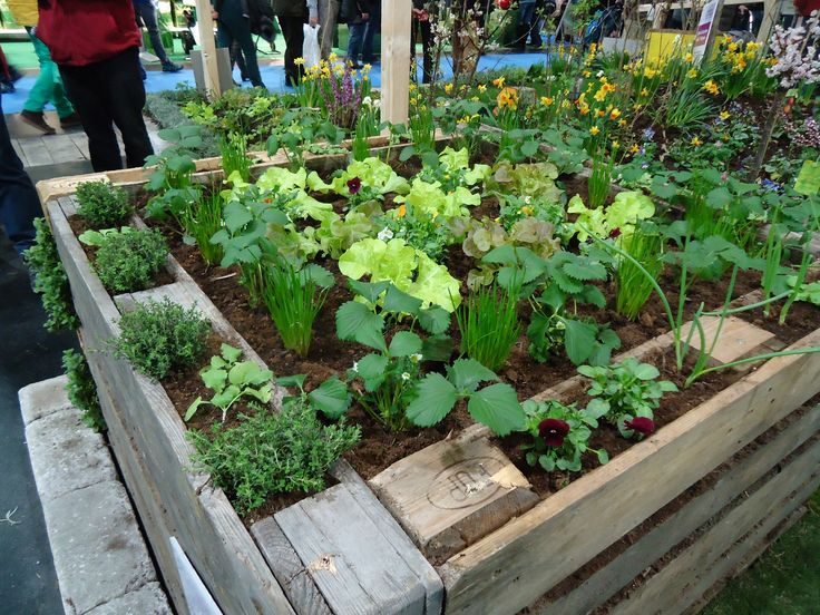 15 Raised flower bed made of euro-pallets | Flickr - Photo Sharing!