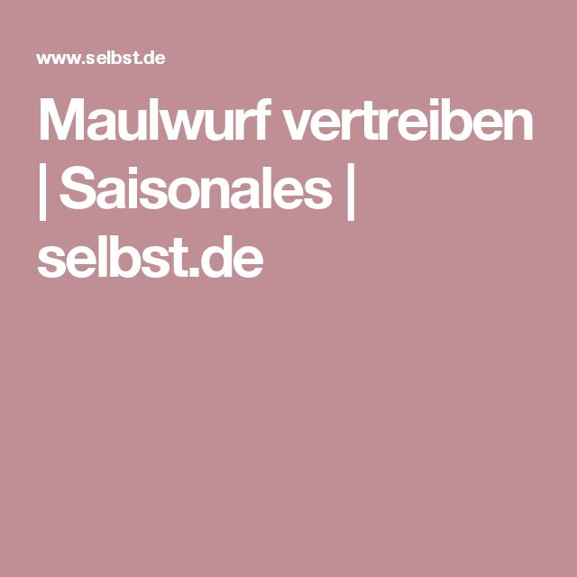 Maulwurf vertreiben | Saisonales | selbst.de