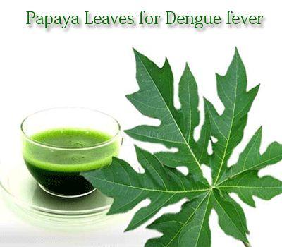 25+ best ideas about Fever rash on Pinterest | Coconut oil ...