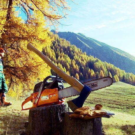 Ogarnięcie pracy w lesie? Tylko z mocnym sprzętem #pilarka #pilarkaoleomac #OleoMac #Kosiarka_pl #ogarnijogród