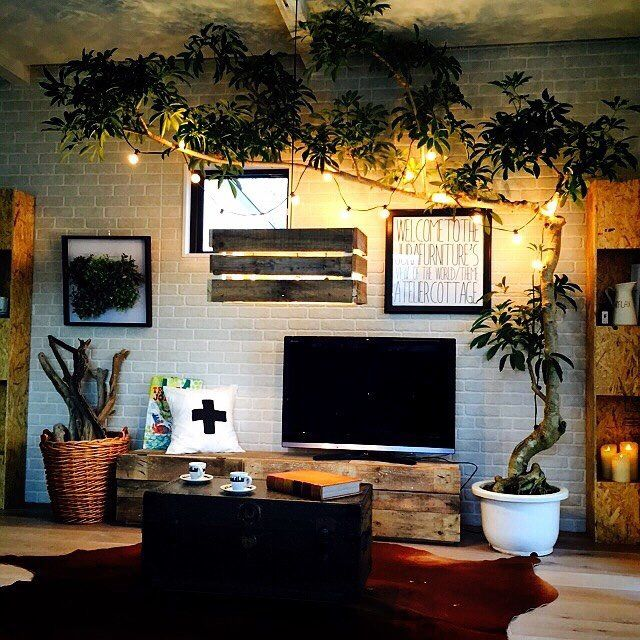Reclaimed wood tv stand, indoor tree with string lights ; industrial ; living room