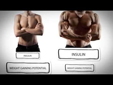 Get Weight Gaining Meal Plans