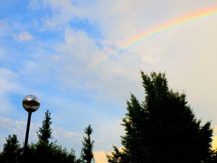 虹(Rainbow)