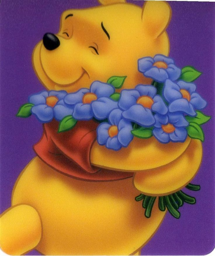 Pooh Violets
