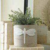Dragonfly Cement Planters @ Bichlane.com