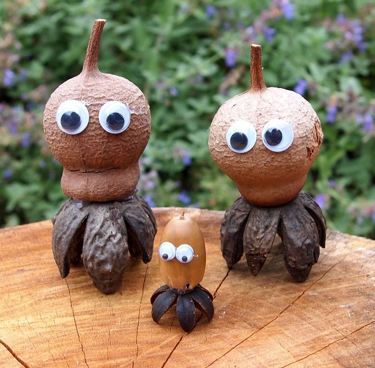A trio of squid. Made with gumnuts and and native pine pods. The baby is made with an acorn and crepe myrtle pod (non native)