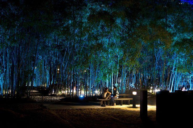 Ambiente romántico, intimo, luminoso y hermoso!