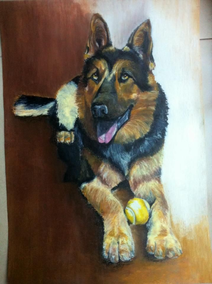 """German Shepherd, a2 made with oil pastels by Rita Marques Guedes """"PACO"""""""