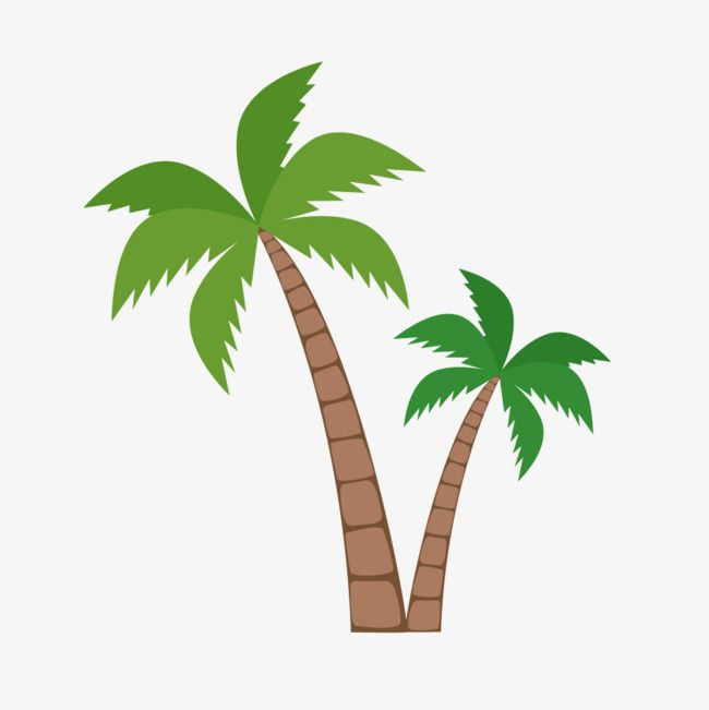 Green Coconut Trees Coconut Tree Clipart Green Vector Coconut Vector Png Transparent Clipart Image And Psd File For Free Download Coconut Vector Coconut Tree Clip Art
