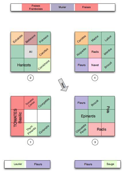 Potager carré