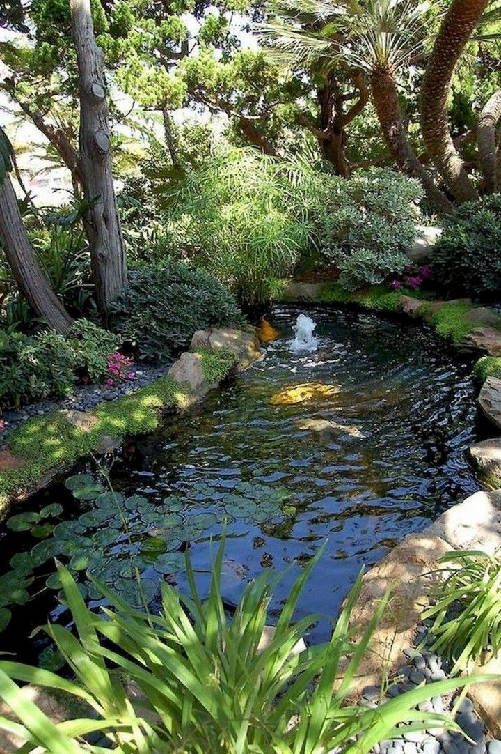 More Diy Backyard Ponds Projects Be Made More Interesting And Adding A Pond With The In 2020 Water Features In The Garden Backyard Water Feature Garden Pond Design