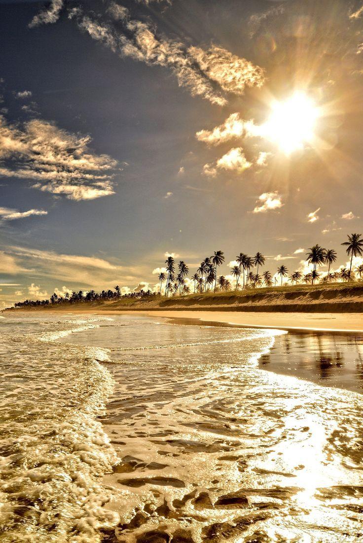 13 Paradise Seashores within the World