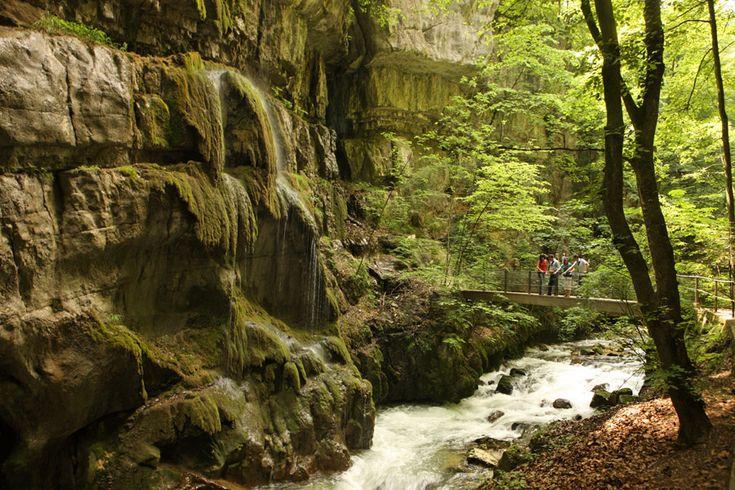Randonnée - Les gorges du Taubenloch - canton de Berne - Suisse