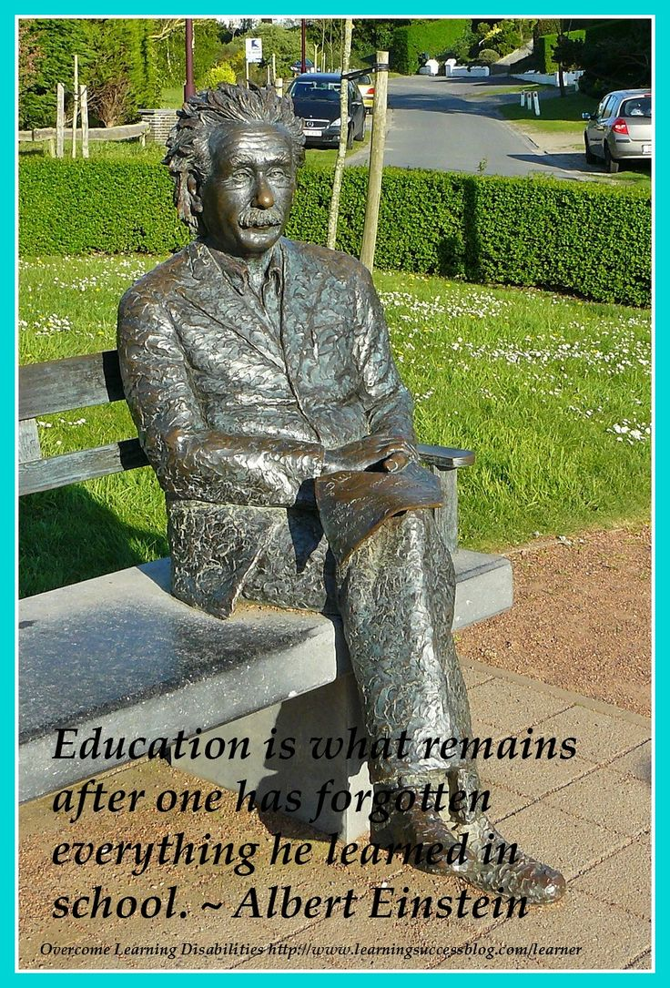 Education is what remains after one has forgotten everything he learned in school. ~ Albert Einstein