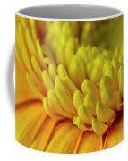 Yellow Gerbera Macro  Coffee Mug by Sandra Foster