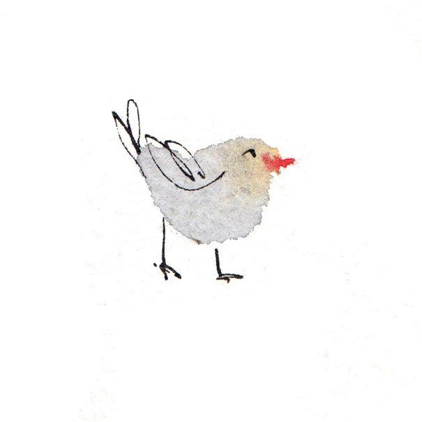 Chuffed Bird. Theodore Key. Illustration in pen and ink with watercolour. follow @level_shelving