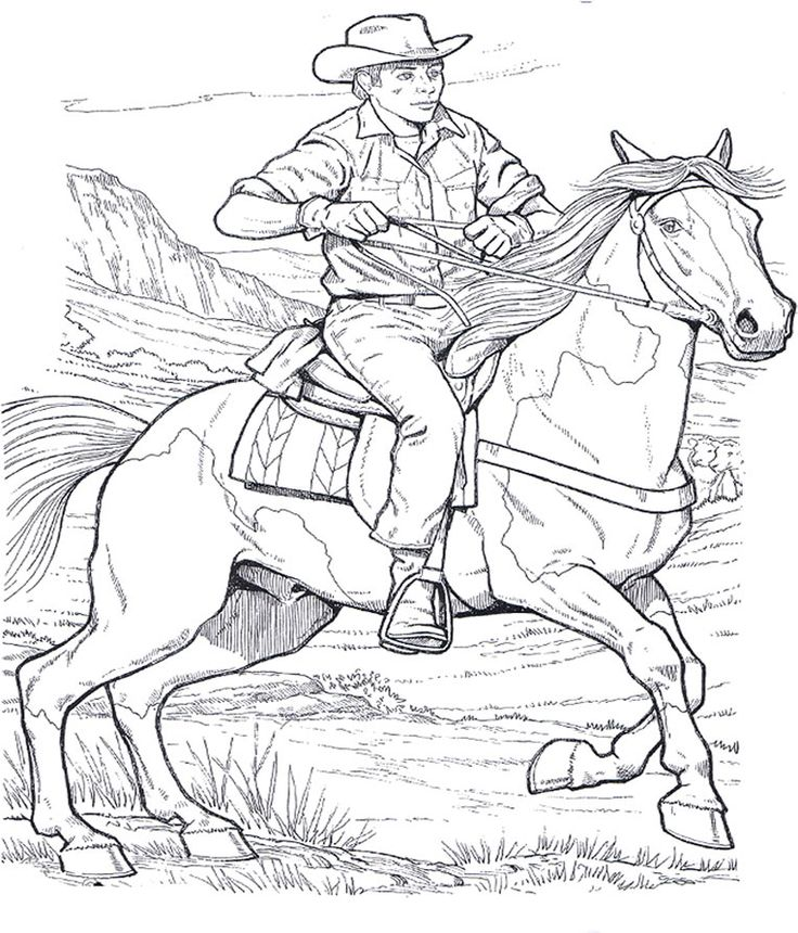 horses coloring pages for adults and teenagers free high quality