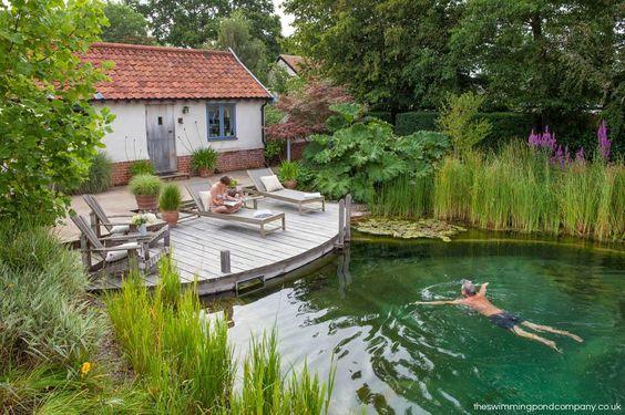 Pourquoi la piscine naturelle fait-elle tant d'adeptes ?