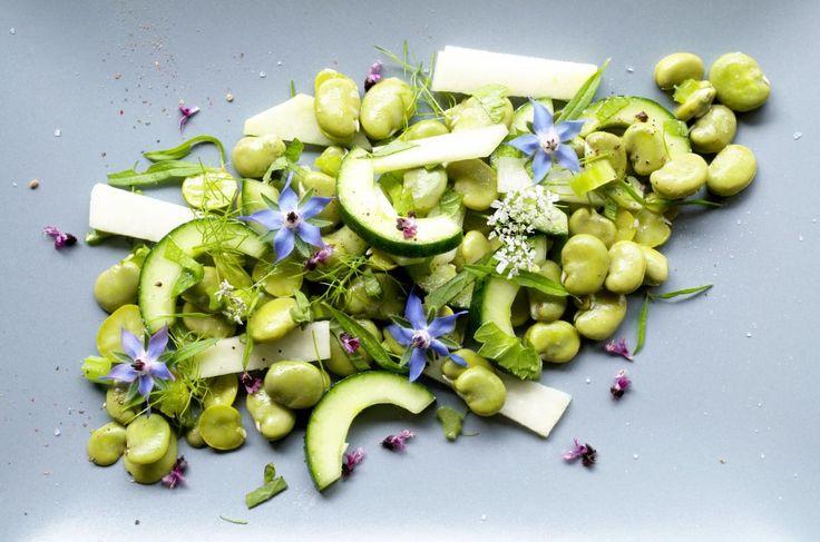 Salat von dicken Bohnen Gurke Kohlrabi und Kraeutern