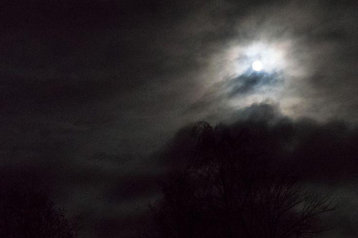 Moonlight shadows. Skygger og månelys