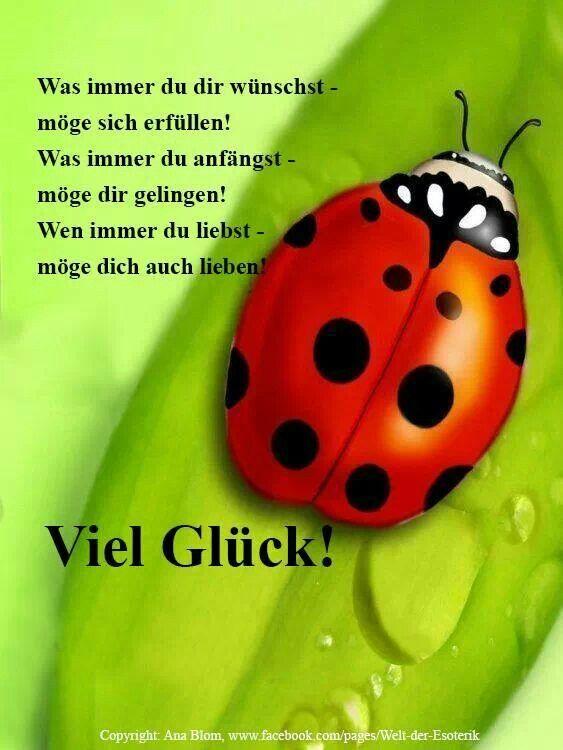 Viel Glück | Happy New Year / Good Luck