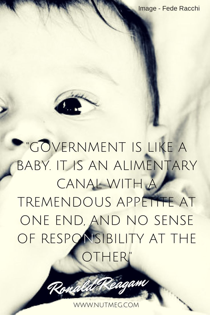 """Government is like a baby. It is an alimentary canal with a tremendous appetite at one end, and no sense of responsibility at the other."" - Ronald Reagan"