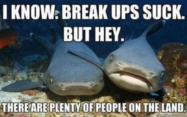 Break ups suck - shark meme - http://jokideo.com/break-ups-suck-shark-meme/