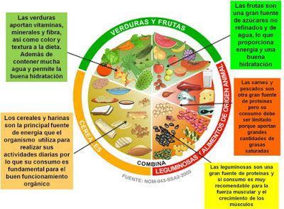 VaXtuxpan. Periodismo Virtual.: Recomiendan el plato del bien comer.
