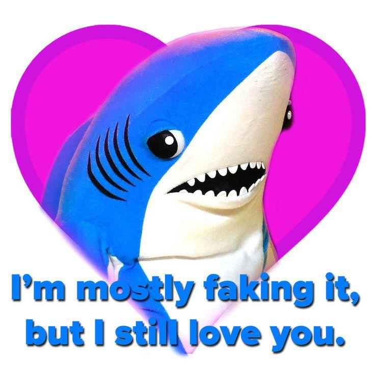 15 best katy perry s left shark images on pinterest sharks left
