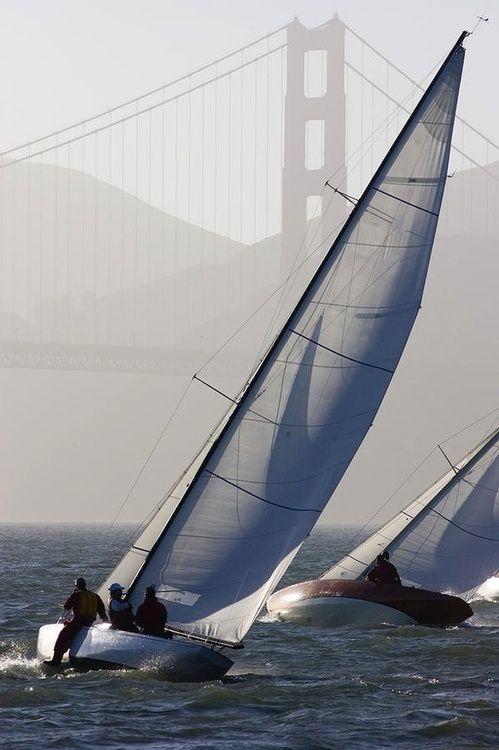 Sailboats Race On San Francisco Bay With The Golden Gate Bridge, San Francisco Bay, California @ART