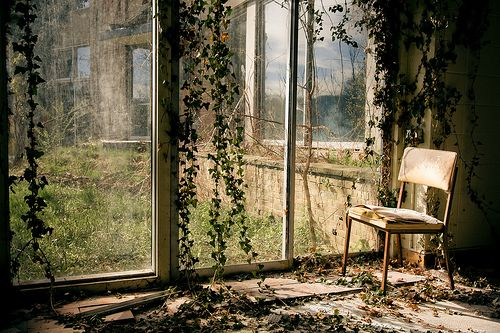 Abandoned Halcyon Hall - a women's college built in 1893Abandoned Locations, Inspiration Places, Dahlias Room, Inspiration Photography, Windows, Abandoned Beautiful, Forgotten Places, Beautiful Photography, Abandoned Places