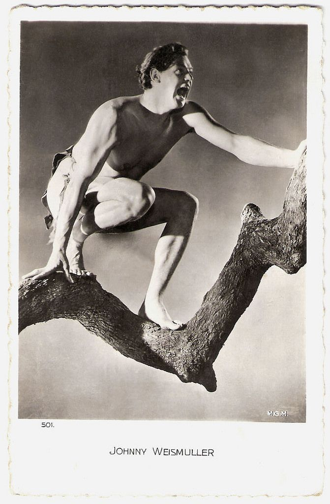 https://flic.kr/p/RkRu1Z | Johnny Weismuller | French postcard by Ed. Chantal, Paris no. 501. Photo: M.G.M.   German-American competition swimmer and actor Johnny Weissmuller (1904-1984) is best known for playing Tarzan in films of the 1930s and 1940s and for having one of the best competitive swimming records of the 20th century. Weissmuller was one of the world's fastest swimmers in the 1920s, winning five Olympic gold medals for swimming and one bronze medal for water polo. He won…