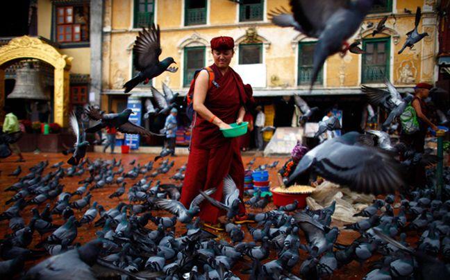 Φωτογραφίζοντας την καθημερινότητα του κόσμου - Μοναχός ταΐζει περιστέρια στο Νεπάλ