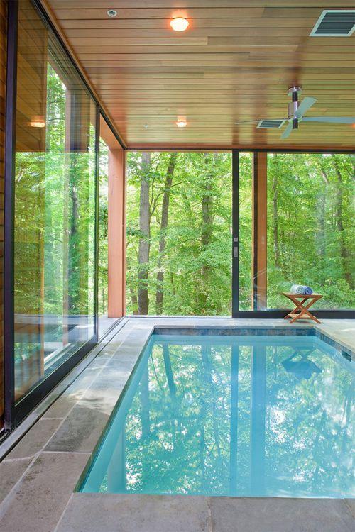 piscina interior acristalada en el bosque