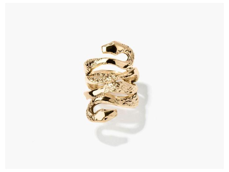 mamba-ring.jpg (1200×900)