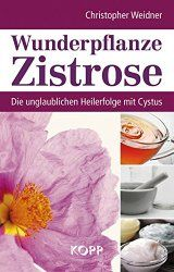Cystus / Zistrose: Anwendung und Wirkung von Zistrosen-Tee, Salbe, Creme und Duft. Der Cistus Incanus Tee beugt Grippe vor. Entzündliche Haut-Krankheiten...