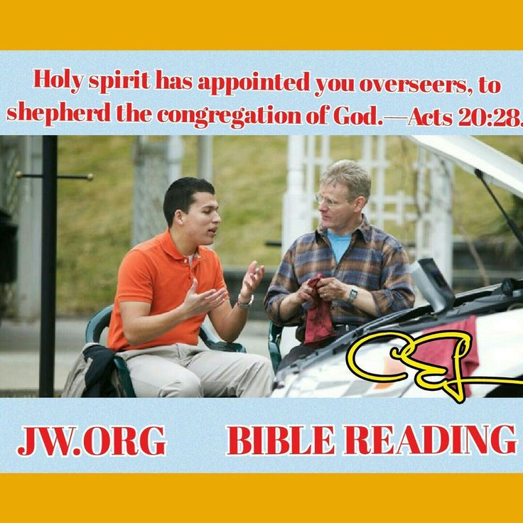 Wednesday, August 10 Holy spirit has appointed you overseers, to shepherd the congregation of God.—Acts 20:28.