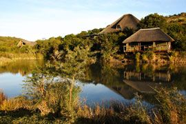 Shamwari Game Reserve, Port Elizabeth, South Africa..... For visit, hire a car from : http://www.carrentalportelizabethairport.com