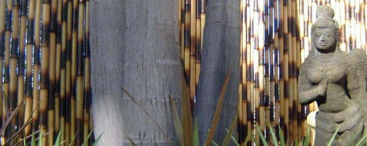 Jati Bamboo Screens Jati Bamboo Screens #BamboScreens #BambooFencing #Fencing #Natural