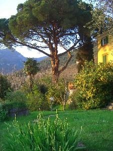 Camaiore, Tuscany. Lucca Region. 15km from beach. reduced rates as vacant all june and july....