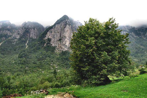 Pascoli verdi e boschi saranno testimoni dell'alleanza tra natura e abitanti della Valle dell'Agno che hanno salvaguardato questi luoghi dalla frenesia della quotidianità.  http://www.jonas.it/trekking_piccole_dolomiti_pasubio_314.html