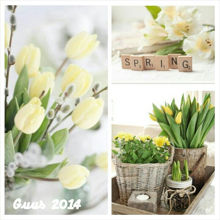 Guus 2014: Hello Spring, Happy Spring, Spring Arrives, Spring Decor, Collages Photos, Spring Fever, Creative Collages, Easter Spring Cottage