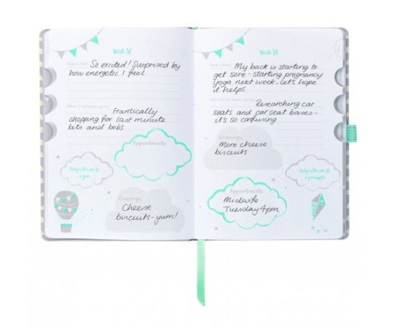 Introducing the Pregnancy Journal. A clever diary, planner and notebook   Four handy storage pockets   Diary covers from four weeks to birth.  #pregnancy #pregnancyjournal #journal #journaling #mumtobe #momtobe #pregnancyplanner #planner #planneraddict #bulletjournal