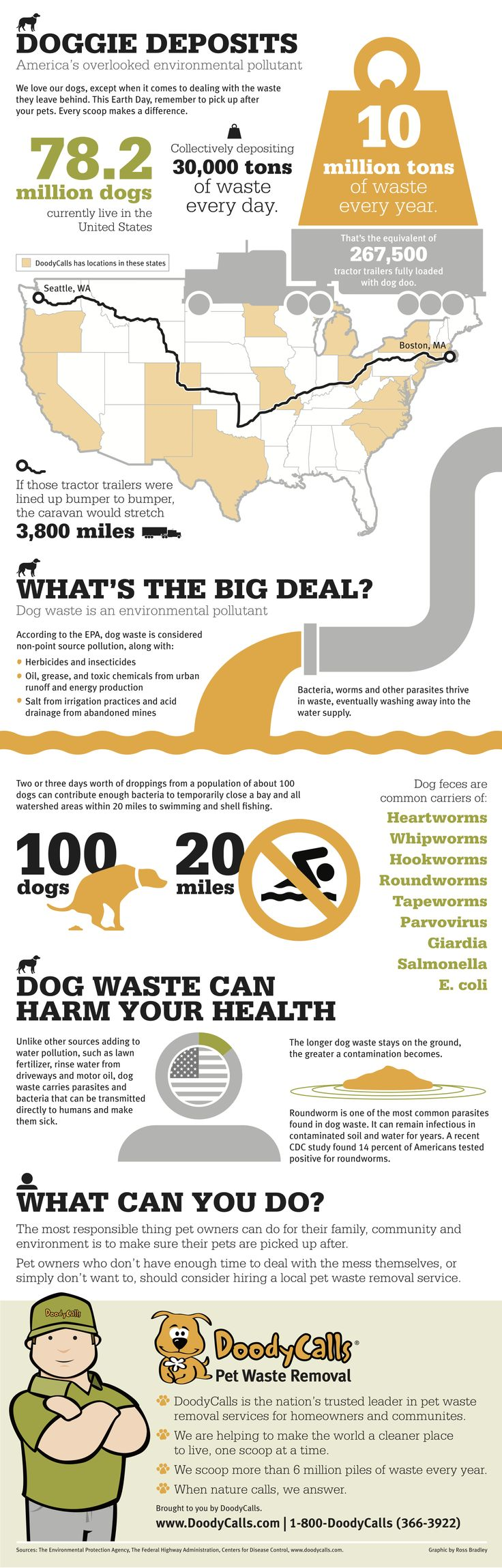 importance of environmental sanitation pdf