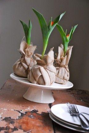 Leuke voorjaarsdecoratie: tulpen verpakt in jute.