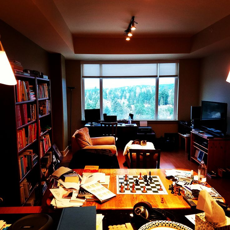 my living room in Bellevue WA USA. notice cat