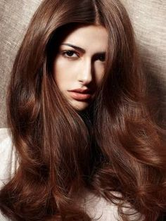 Chestnut Brown Hair Color Dying My This
